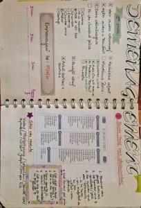 Pages de mon bullet journal